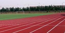 学校塑胶跑道材料选用哪种好?